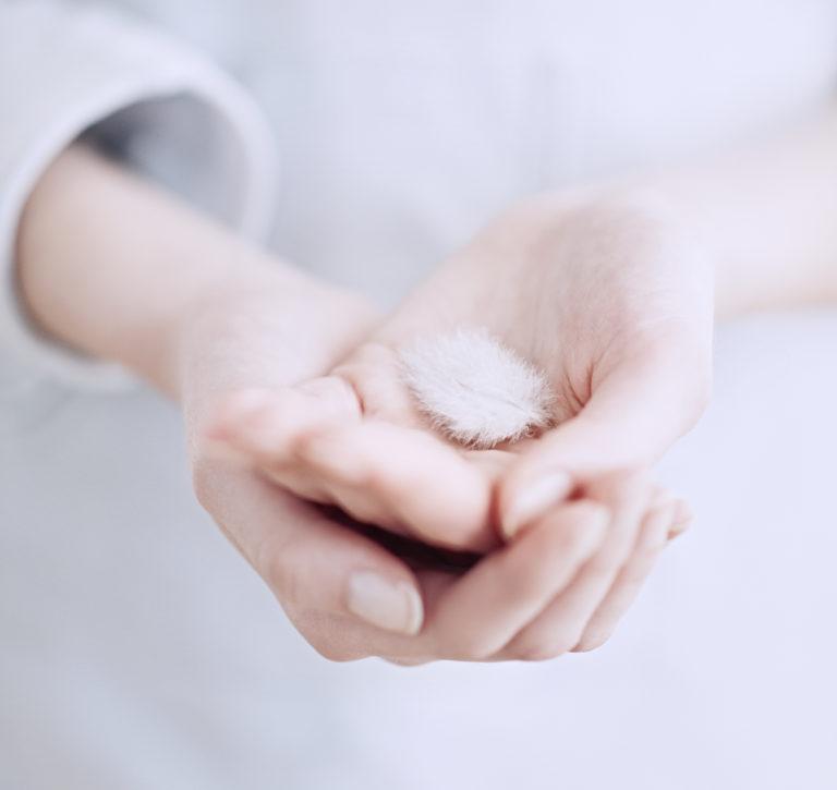 image gros plan d'une plume dans les mains d'une femme