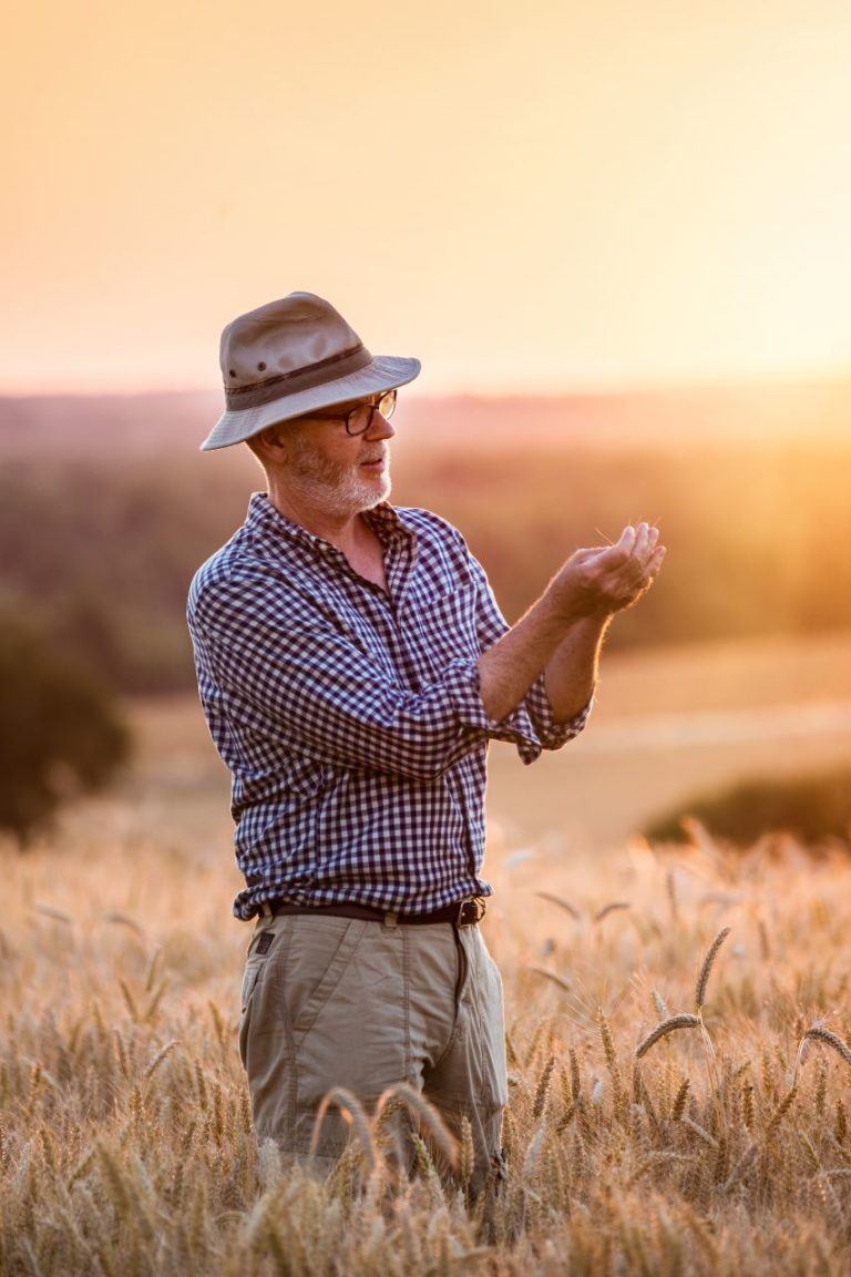 photo corporate, agriculteur dans son champ de blé