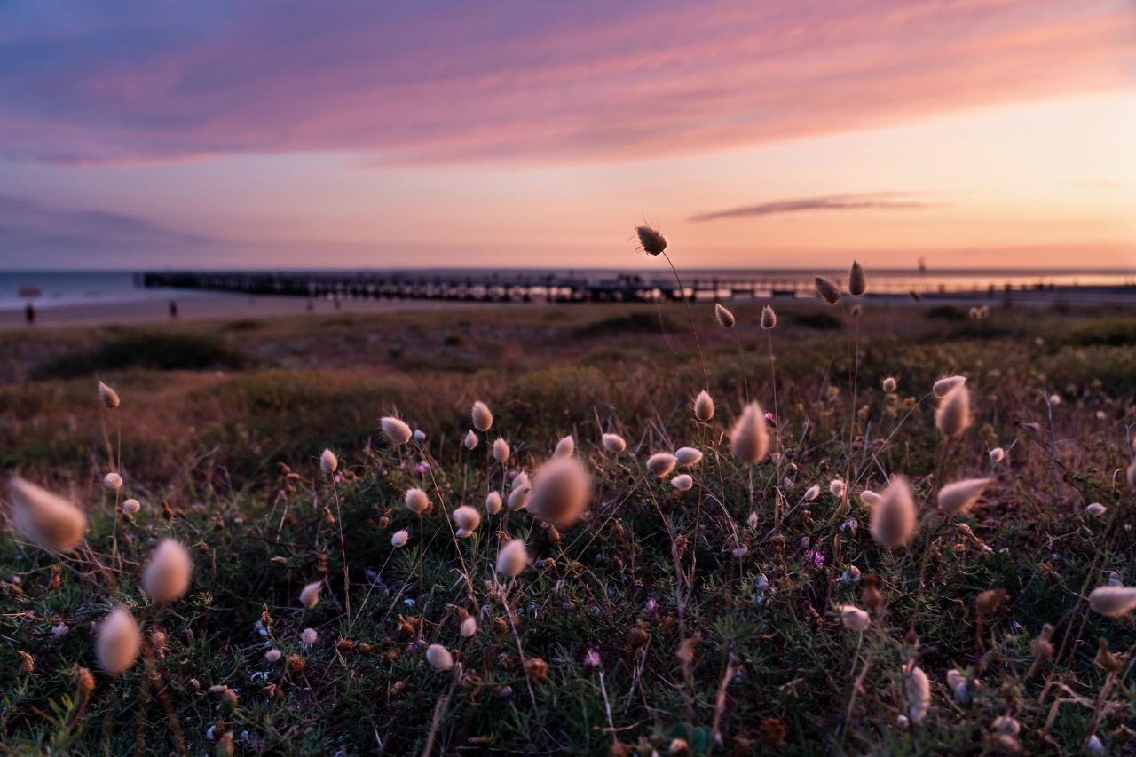 photographe de paysage Pornichet
